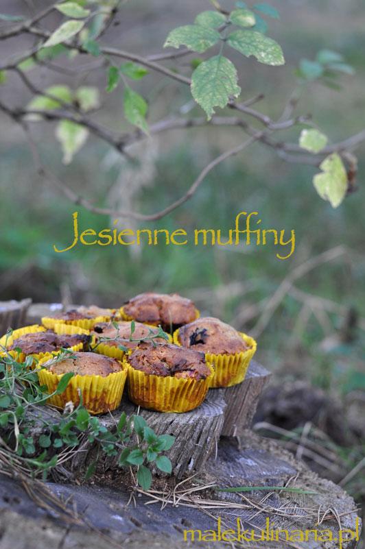 muffiny_dynia_1a