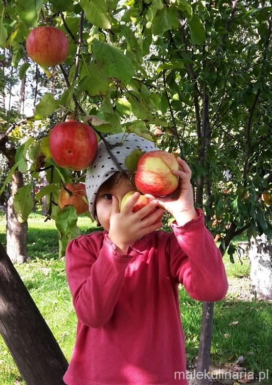 pieczone_jablka_1g